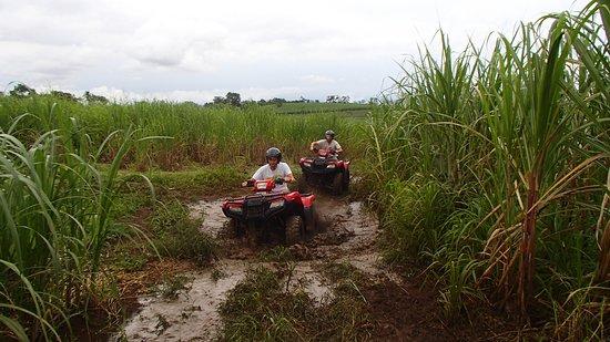 Agua Azul, Costa Rica: got mud?