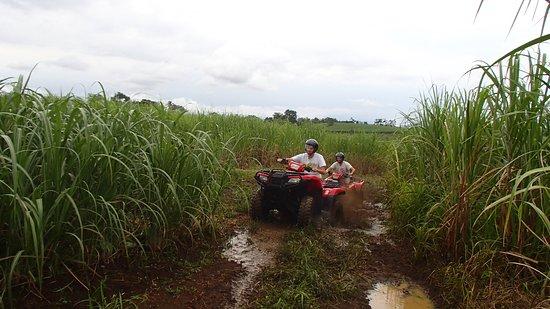 Agua Azul, Costa Rica: got mud x2?