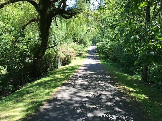 Kenmore, WA: Nice, shady paths