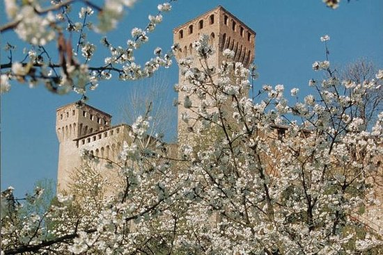 Train and Bike Day Tour from Bologna: Vineyards and...