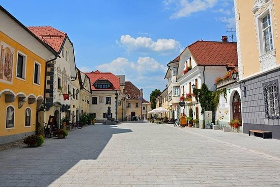 Excursión de medio día a Radovljica...
