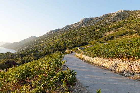 Wine Lover's Tour of Peljesac...
