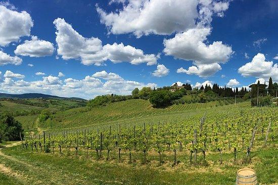 Visite et dégustation de vins à Sienne
