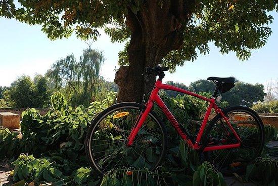Aluguel de bicicleta de 1 dia em Palma