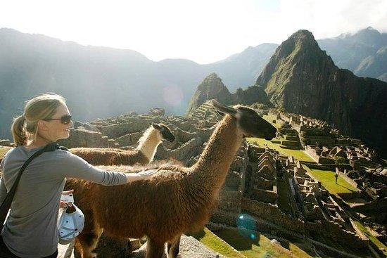 Machu Picchu Standard Inngangsbillett