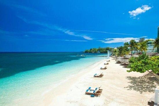 excursies jamaica boeken