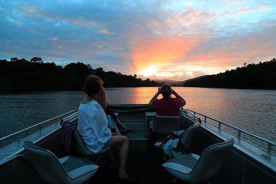 Daintree River Sunset Cruise