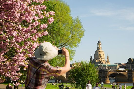 Dresden: The Sightseeing Tour with a...