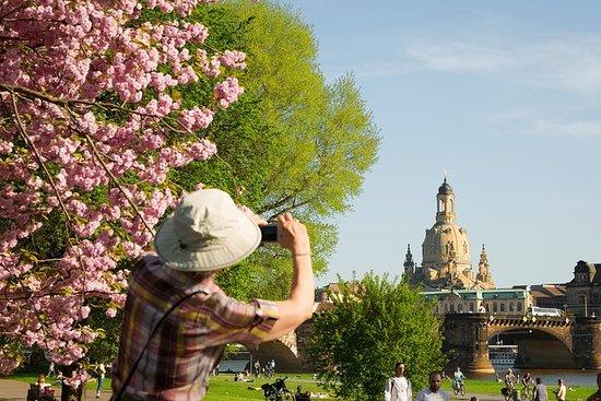 Dresden: Sightseeingturen med en ...