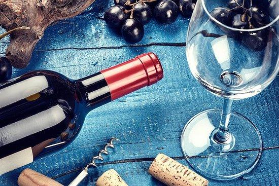 Degustação de vinhos, história do...