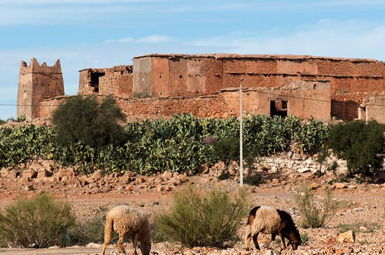 Offshore Amazigh Fortified Granaries