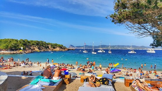 What A Fun Day Kuva Ibiza Baleaarit Tripadvisor