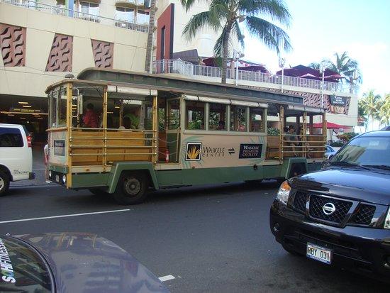 Waikiki es recorrida por un bus turístico que le permite conocer muchas áreas aledañas