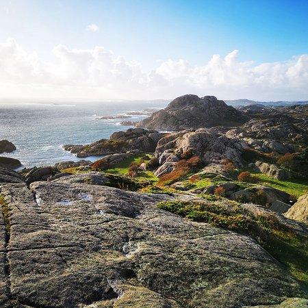 Auglend & Vandringshavn