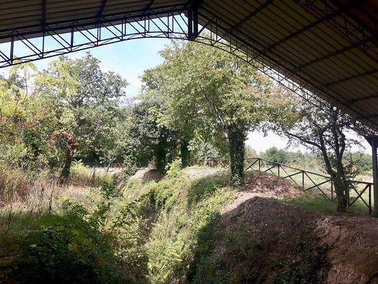 Arcevia, Italië: Area archelogica
