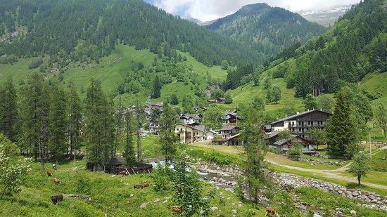 Carcoforo, Włochy: dal ristorante Alpenrose si possono fare stupende passeggiate nel verde del Parco più alto d'Eur