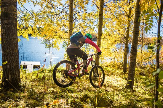 Roll Outdoors - Mountain Biking