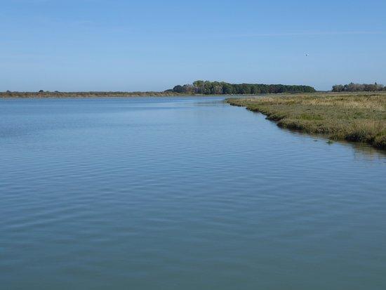 Sallenelles, Frankrijk: estuaire de l'orne