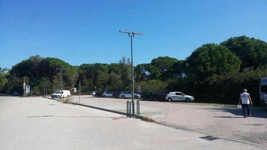 Porto Caleri
