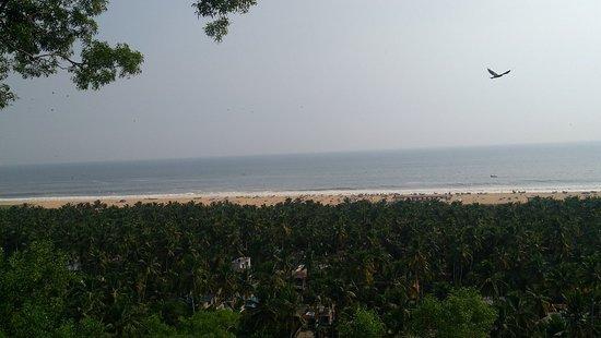 Chowara, India: IMG_20180927_155933_large.jpg