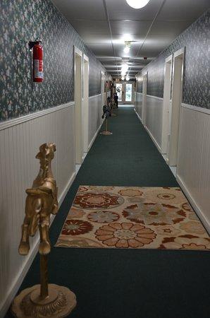 Step Back Inn: Carousel horses line the hallway