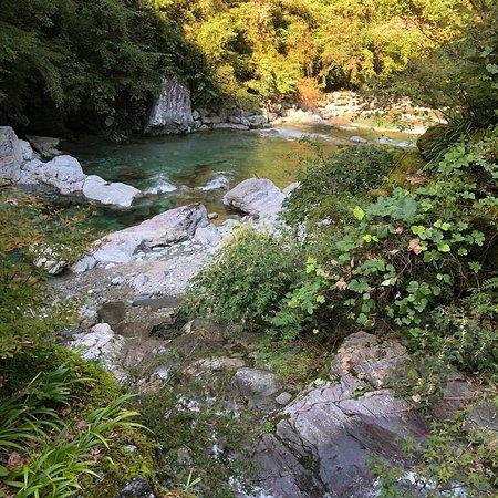 Kochi Prefecture, Japan: photo2.jpg