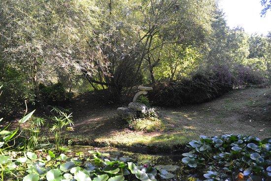 Point D Eau Jardin petit point d'eau - picture of les jardins tranquilles, brantome