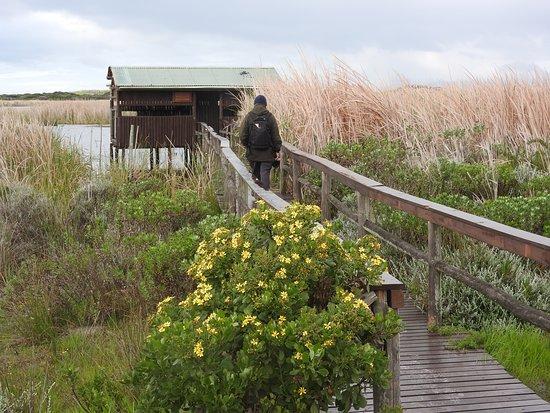 Rondevlei Nature Reserve