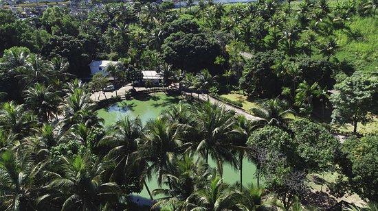 Centro Ecologico Projeto Caiman