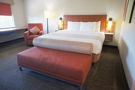 Cutler Ridge, FL: Suite