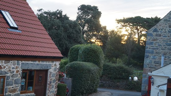 St. Pierre du Bois, UK: Sunrise over the courtyard
