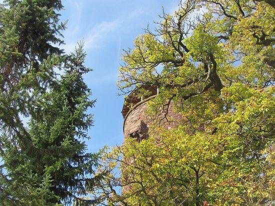 Trendelburg, Deutschland: Blick aus dem Park der Hotelanlage