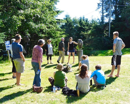 Learn about the Geological History of Haida Gwaii at Crystal Cabin's Tlell Stone Circle