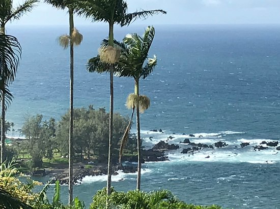 Laupahoehoe, HI: Taken from the scenic look out