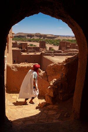 Moroccan Mahi Trip
