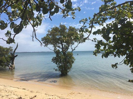 Coochiemudlo Island Foto