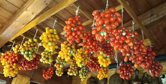 di Marialuisa D. Agosto/Settembre 18. Piennoli Tre Pomodori, da semenzaio proprio