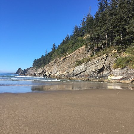 Short Sands Beach: Wonderful beach with a great waterfall at the north end. My daughter surged and I played guitar.