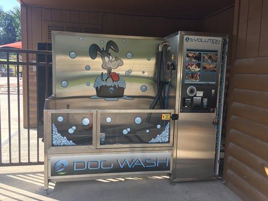 River Plantation RV Resort: Dog wash!