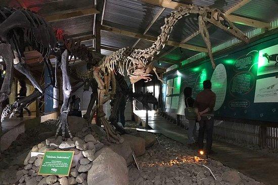 Visite du Musée d'histoire d'El...
