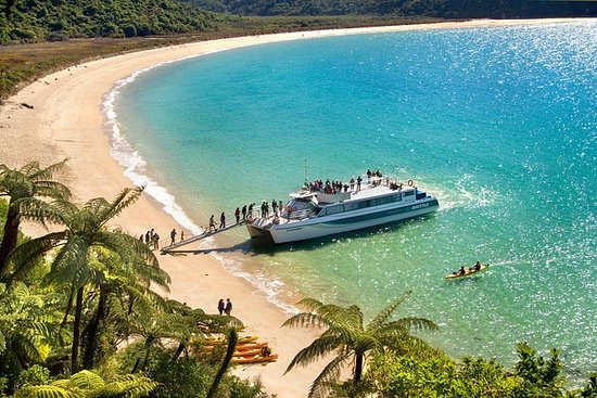 Abel Tasman National Park Cruise and...