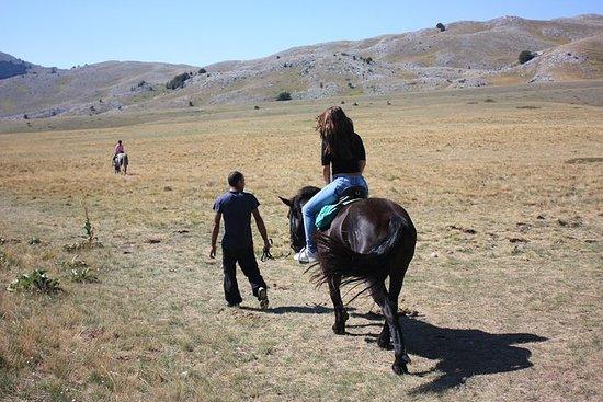 Equitazione sulle colline di Cerrano