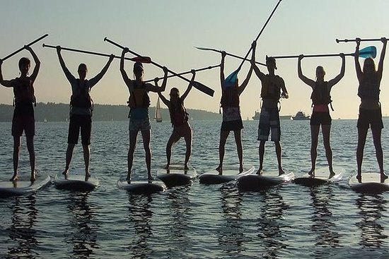 SUP Paddleboard Lesson and Tour...