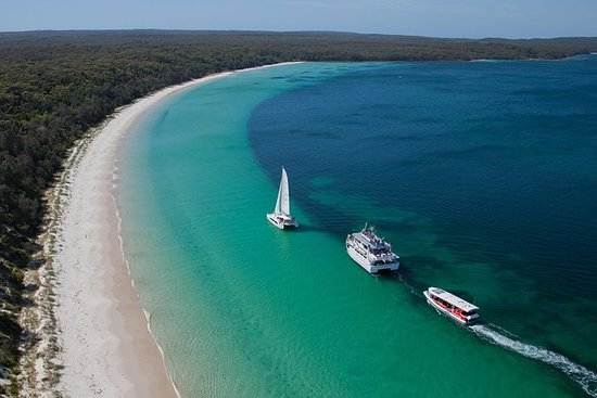 Best of Jervis Bay - Eco Cruise
