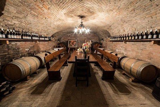 皮埃蒙特地区酿酒厂的巴罗洛葡萄酒和美食品尝