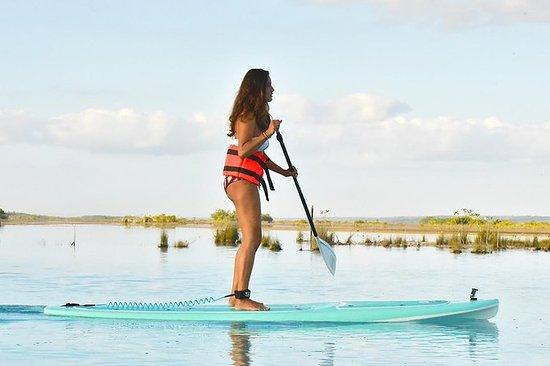 Sunrise Paddle Board Tour