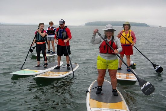 Stand Up Paddleboard Tour in der ...