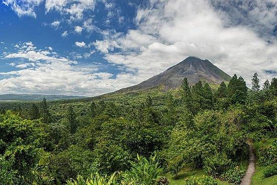 Tour de Observación del Volcán y...