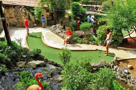 Billet d'admission golf jungle