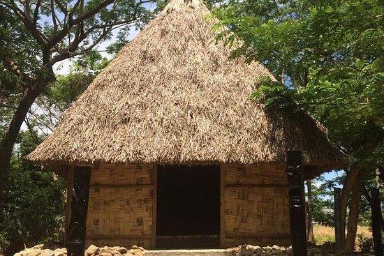 Aldea de la cultura de Fiji